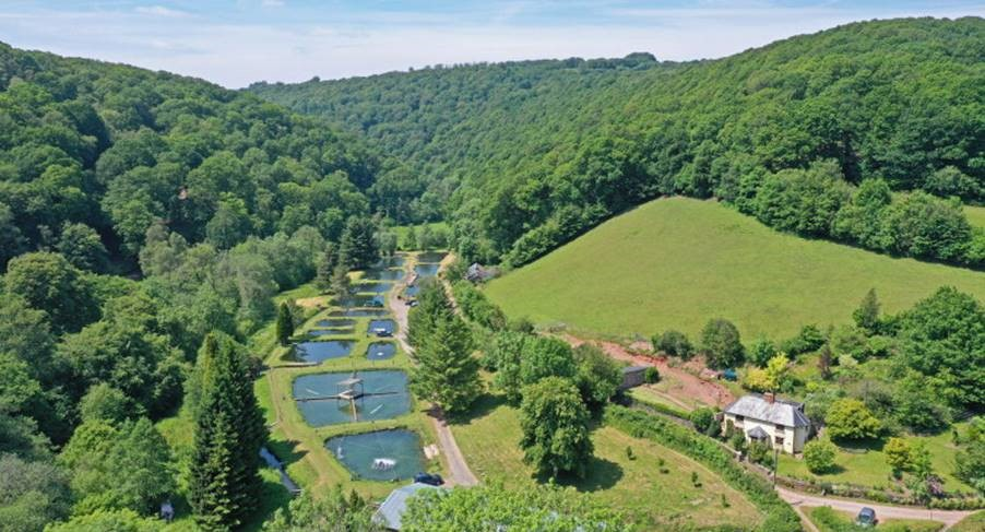 Unique opportunity to purchase established and profitable fish farm in the Haddon Hills of Exmoor